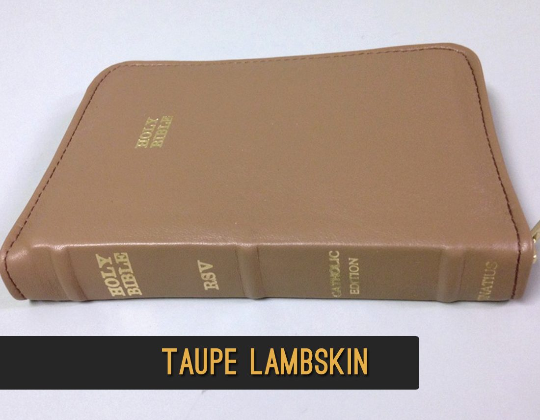 AALeather | Lambskin Bibles