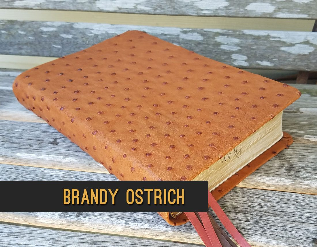 Brandy Ostrich Leather Bible