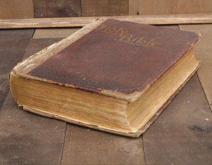 1897-new-illuminated-bible-1