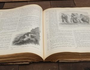 1897-new-illuminated-bible-4