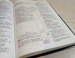 1991 KJV NKJV Parallel Bible